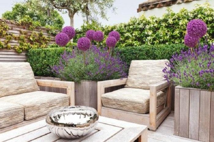 21 Beautiful Terrace Garden Images You