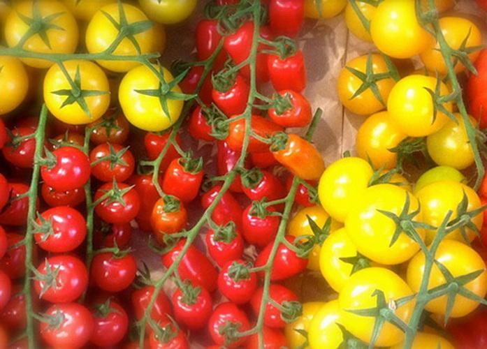 Que es el tomate cherry
