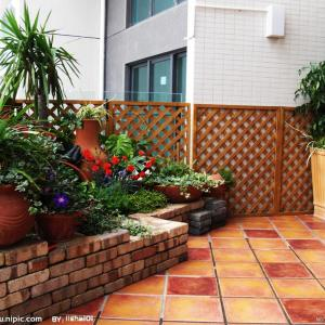3 Balcony Garden Designs for Inspiration | Small Garden Design Ideas