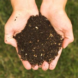 Understanding the Types of Soil in Your Garden