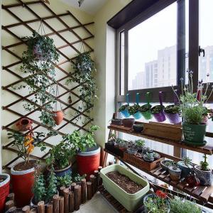 11 Most Essential Rooftop Garden Design Ideas and Tips | Terrace Garden Design