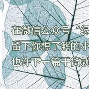 患病的植物不能放弃它, 只要经过努力, 按照正确的办法去做, 很容易起死回生, 重新显出枝繁叶茂的生机, 这种栽培带来的乐趣, 是很多花友都享受其中的。  但要注意的是, 此时受害的植株生长势很弱, 体内的代谢也往往失调。 所以最好把植株移放到阴暗处, 保持合适的温度、不要暴晒、经常喷洒水雾保持适度。 必要时还可以在植株外罩上塑料袋,保持湿度的同时还保温。 但是一定要注意通风, 养护植物通风很重要。  同时, 浇水要非常小心, 应减少水量。 也不能施肥, 直到它长出新叶, 显示出完全复原的迹象的时候, 就可以进行正常的养护管理。