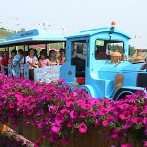 我的旅行我的花 - 花与火车的旅行