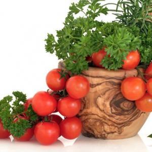 盆栽西红柿打叉掐尖图解(简单)