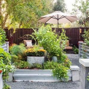 The Best Garden Vegetables for Colorado