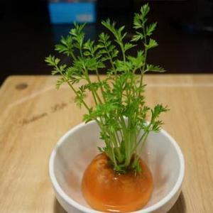 吃不完的蔬菜变盆栽,装点环境毫不逊色!