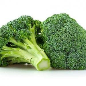 How to Grow Broccoli in a Greenhouse