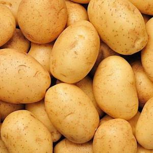 How to Grow Yukon Gold Potatoes