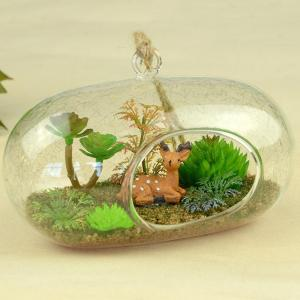 DIY Terrariums.. Easy!