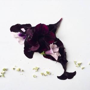 原来用花做的画这么美!  周末愉快!