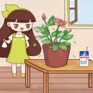 喷牛奶杀虫  花花今天教大家一个之前从来没用过的方法,那就是用牛奶来杀虫,是不是觉得很神奇呢?   操作步骤:  1、首先找一个干净的小喷壶,将纯牛奶打开口子,倒入小喷壶中备用。  2、用小喷壶中的牛奶朝着植株上喷洒,记得叶子的正反面都要喷到。  3、将喷了牛奶的花直接放到室内通风处,静静等待几个小时的时间,让牛奶在叶面上变干即可。  4、牛奶变干后会覆盖一层黏膜,对于红蜘蛛、蚜虫等小虫子来说,直接就被牛奶黏膜固定住了。而且红蜘蛛、蚜虫等还会不断吸收牛奶,最后整个都被撑死了。  5、用牛奶杀虫的方法,主要适用于红蜘蛛、蚜虫等比较小的虫子,各位花友可以试一试哦!  喷头冲水  接下来,花花介绍一个简单的方法,那就是用水冲!不管是红蜘蛛还是蚜虫,只要拿水冲一冲,立马就见效!   操作步骤:  1、将有虫害的植株放到卫生间,打开淋浴的喷头从下往上冲,这样可以将叶片背面的虫子全都冲下去。  2、如果家里的花担心喷头淋水太多,可以选择找一块泡沫板,剪成比花盆稍微小一些的面积,然后在面板上豁一道口子,口子的大小保证植株茎干能穿过去即可。  3、将泡沫板套在花盆上,保证将盆面整个盖住,然后将家里的花平放在地面上(如果担心放在地面会损坏,可以在花盆下垫个高点的东西)  4、一边用水龙头冲洗叶片,一边用手在叶片上轻轻揉搓,将叶片上的虫子和一些分泌物都清洗掉,然后放在阴凉通风处晾干,这样就能将虫子杀死了。  5、像是红蜘蛛、蚜虫、小黑飞等,都可以用水冲的方法来杀虫。  洗衣粉+尿素杀虫  接下来,花花就给大家介绍一个好方法,那就是众多花友试验过的,洗衣粉加上尿素杀虫法!   操作步骤:  1、将洗衣粉和尿素、清水按照1: 4: 100的比例配置成溶液,俗称洗尿合剂。  2、首先拿个一次性的小牙刷,蘸取配置好的洗衣粉尿素溶液,朝着植株上有病虫害的叶片刷一刷,将附着在叶片上的虫子或虫卵大概刷掉一部分。  3、剩下的溶液直接装在喷壶中,对着有病虫害的植株喷洒即可。大概3天喷洒一次,连续喷洒3-5次就足够了。  4、因为洗衣粉跟虫子接触后,会在虫子表面形成不透气的黏膜,从而让虫子窒息死亡,而尿素又含有破坏虫子几丁质的作用,所以比单用洗衣粉效果好一些。洗衣粉尿素水对于杀灭蚜虫、红蜘蛛、菜青虫等效果显著。  烟丝泡水杀虫  家里如果有吸烟的花友,可以试试接下来这个方法,也就是所谓的烟丝泡水杀虫,效果那也是非常好的!   操作步骤:  1、将家里抽烟剩下的烟头都收集起来,然后将里面的烟丝都扒拉出来,按照1:20的比例兑水,让烟丝在水中充分浸泡。想要烟头杀虫效果好,还可以在水中加一小勺肥皂水。  2、将烟丝在清水中浸泡大概8个小时的时间,让烟丝在清水中充分浸泡,然后将烟丝过滤出来,剩下的就是烟丝水了。  3、将烟丝水装在喷壶中,直接朝着植株上有病虫害的叶片喷洒,记得叶片的正反面都要仔细地喷洒。大概5天喷洒1次,连续3-5次就能杀灭虫子了。  4、烟丝水属于弱碱性,而且其中的焦油对虫子来说还有微毒性,所以可以杀死蚜虫、红蜘蛛等虫害。  胡椒+辣椒水泡水杀虫  花花之前一直试过辣椒水杀虫,前几天偶然配了点胡椒水,没想到杀虫效果也是很强,简直成了花花的心头好!   操作步骤:  1、将胡椒和辣椒收集起来,放在清水中浸泡24个小时的时间。辣椒可选择那些小米椒之类比较辣的品种,剁碎了后效果更棒!  2、浸泡24小时后,将辣椒和胡椒过滤出来,剩下的就变成辣椒胡椒溶液了。将溶液倒入喷壶中,朝着植株上喷洒即可。  3、如果家里有榨汁机,也可以将辣椒在榨汁机里打碎,然后将汁液过滤出来,再跟浸泡过的胡椒水混合在一起,装在喷壶中喷洒。  4、无论是胡椒还是辣椒,都带有强烈的刺激性气味,对于蚜虫、小黑飞等来说,都是它们不喜欢的气味,所以这个杀虫方法也是可行的。  粘虫板+胶带杀虫  如果家里小黑飞泛滥咋办?各位花友是不是心里特别不舒服?别急,今天花花就来说一说操作最简单的粘虫板加上胶带的杀虫方法!   操作步骤:  1、看到家里有小黑飞的话,那就将黄色粘虫板放在植株旁边,大概只需要一晚上的时间,就能看到黄色的粘虫板上挂满了小黑飞。  2、如果家里的花除了小黑飞,还有其他比较大的虫子,那就找一个胶带,轻轻触碰虫子,立马就能将虫子给粘下来了。  蚊香+蚊香灰水杀虫  夏季天气热了,讨人厌的蚊子又开始出现了,家里的蚊香是不是又要准备了呢?不如拿蚊香来杀虫子吧!   操作步骤:  1、如果发现家里的花有虫子,那就将一块蚊香放在花盆里。  2、将花盆整个放在塑料桶里,然后将桶密封起来。等到桶内的氧气不足后,蚊香自己就熄灭了。大概只需要20分钟就搞定了!  3、剩下的蚊香灰别丢,直接在植株的盆面上薄薄地铺上一层,浇水的时候,让蚊香灰随着水渗透到盆土内,不仅能杀死土壤中的虫卵,还能为植株补充钾肥,简