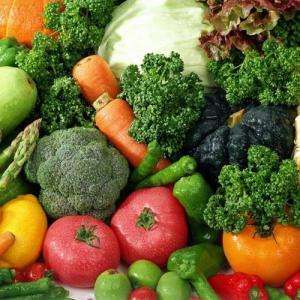 Semillas de hortalizas y siembra