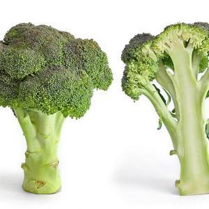 Consejos para el cultivo ecológico del brócoli