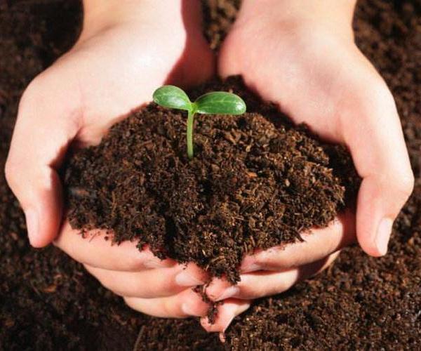 Los drenajes (continuación), la contaminación y erosión de los suelos.