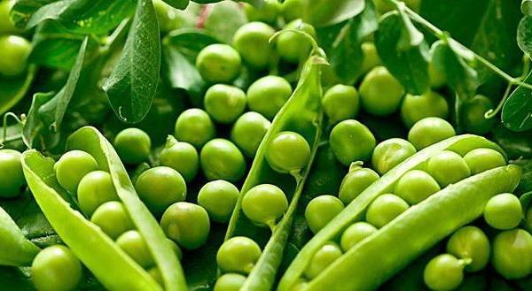 How to Grow Split Peas