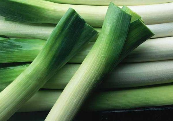 中国蔬菜中占有重要地位的大葱食用益处多