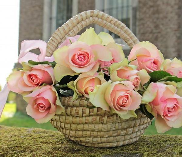 花与花篮图片