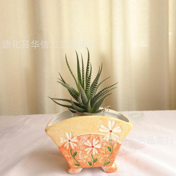Enfermedades de cactus y suculentas
