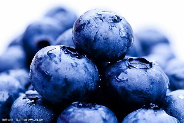 How to Revive a Blueberry Bush