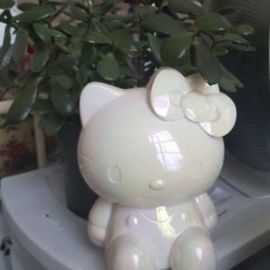 Felix has a Hello Kitty friend :3